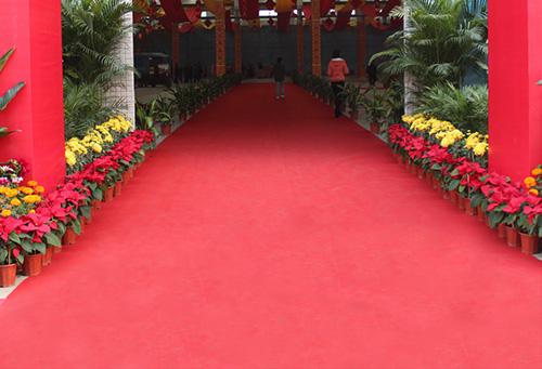 重庆展会地毯
