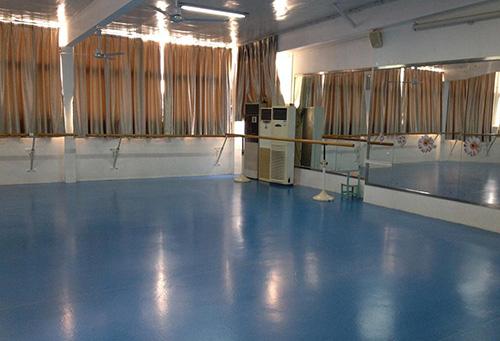 舞蹈室专用地板胶