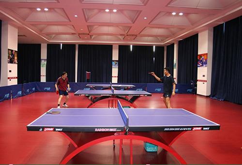 巴南乒乓球场地板