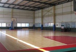 体育馆地板胶